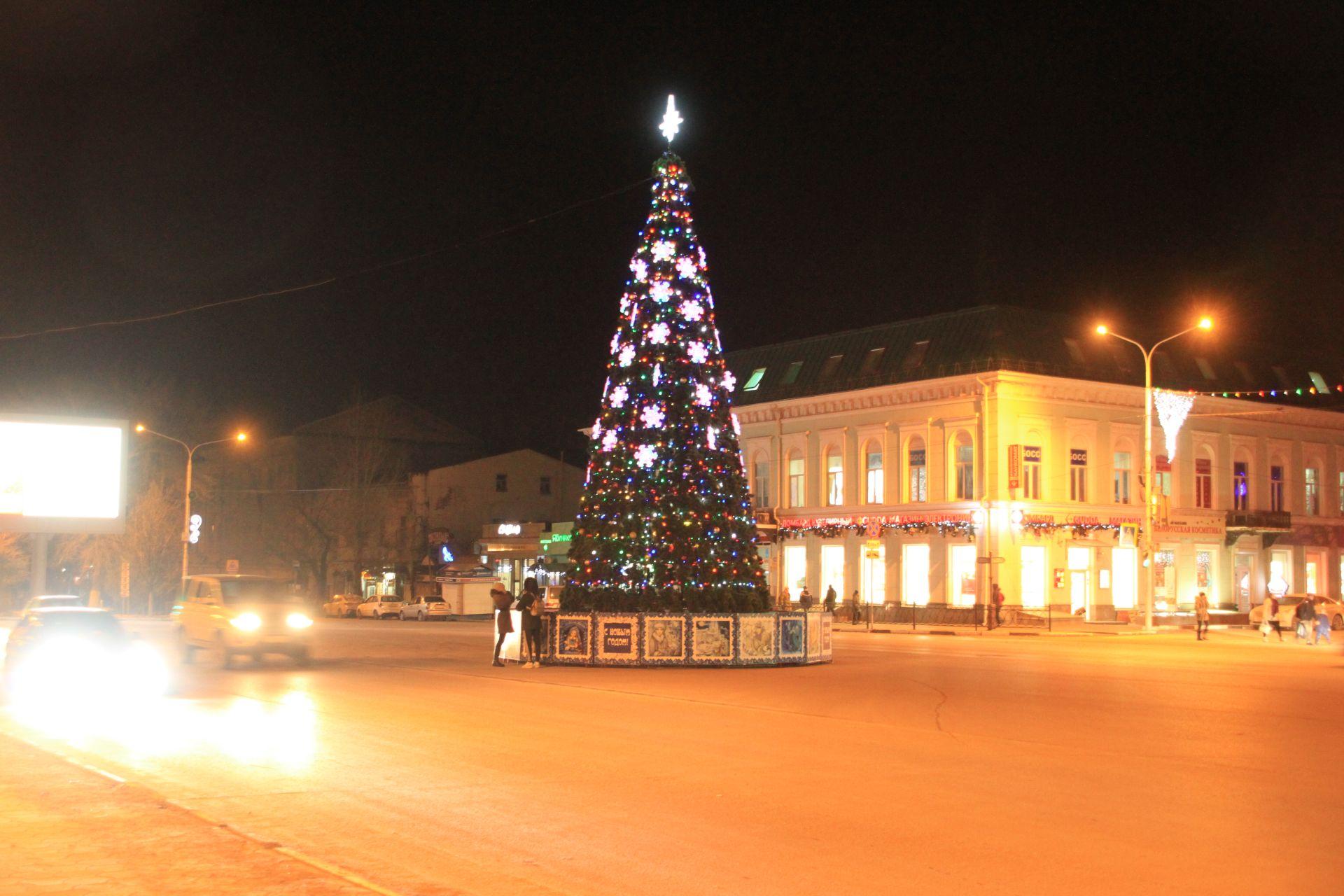 Сегодня в Новочеркасске откроется главная городская елка