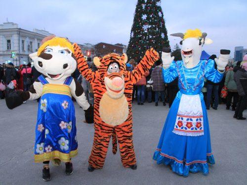 Открытие елки в Новочеркасске. Фото