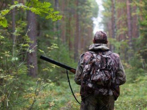На Дону открылся сезон охоты на зайца и лису