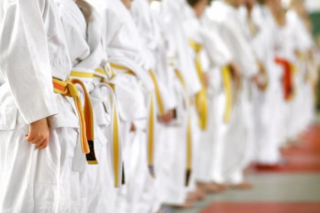 В Новочеркасске проходит турнир по киокусинкай памяти морпеха Позынича