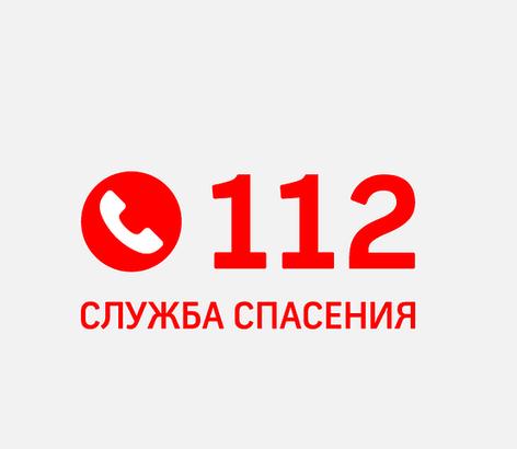 Экстренные службы Новочеркасска за Новогодние каникулы приняли свыше 4,5 тысяч обращений
