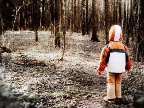 Росгвардейцы вернули опекунам пропавшего ребенка