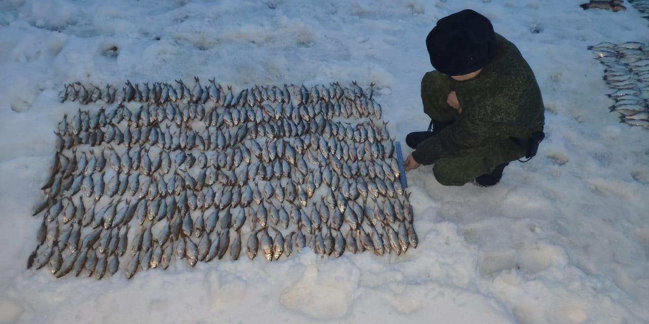 Донские браконьеры могут заплатить до двух млн. рублей за добычу редких пород рыбы