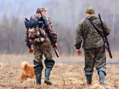 На Дону на пять лет запретили охоту в районе госграницы