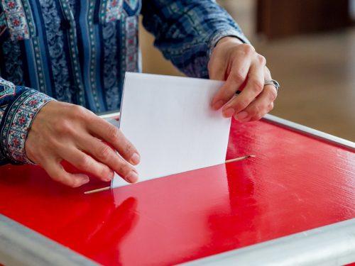 В 12 городах и районах Дона в 2019 году пройдут выборы