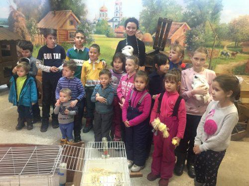 Трогательный зоопарк в Новочеркасске собрал десятки пушных зверьков и рептилий