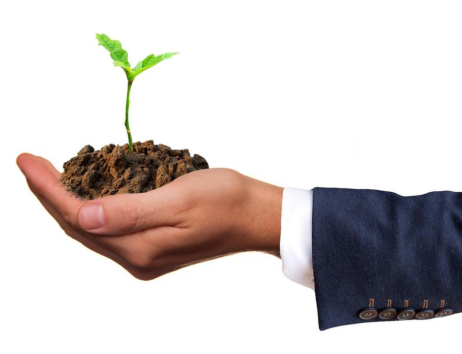 Поддержка сельхозкооперативов и фермерских хозяйств Ростовской области увеличивается
