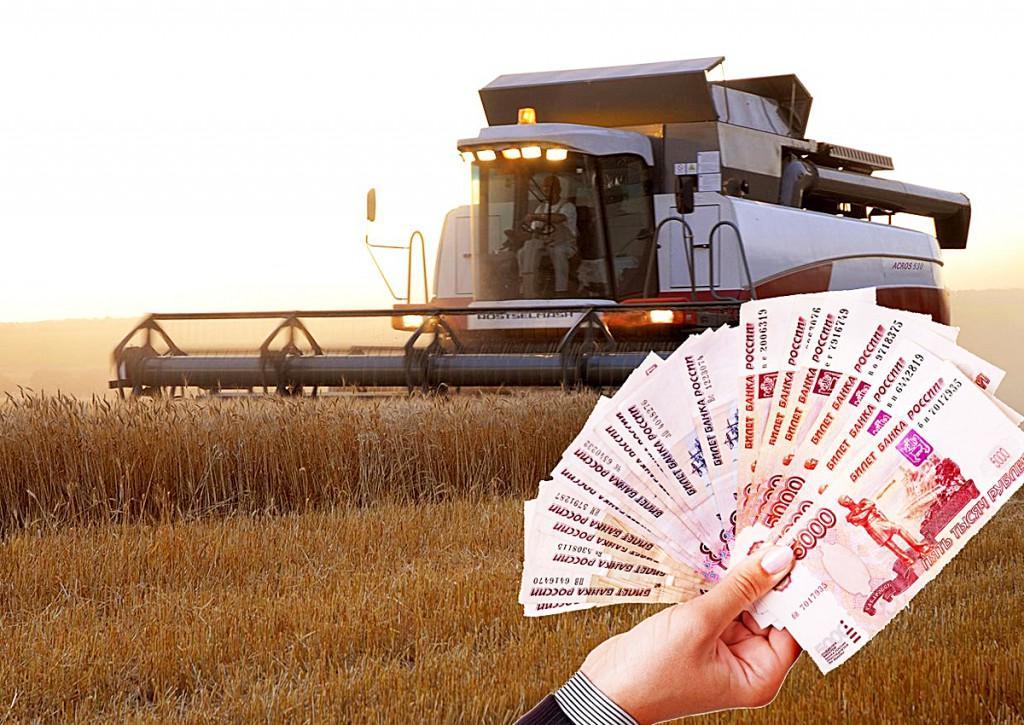 """В этом году  38 млрд рублей планируют потратить на """"бюджет развития"""""""