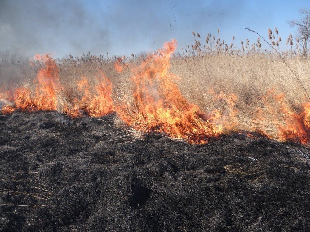Каждый житель Ростовской области должен помнить о правилах пожарной безопасности