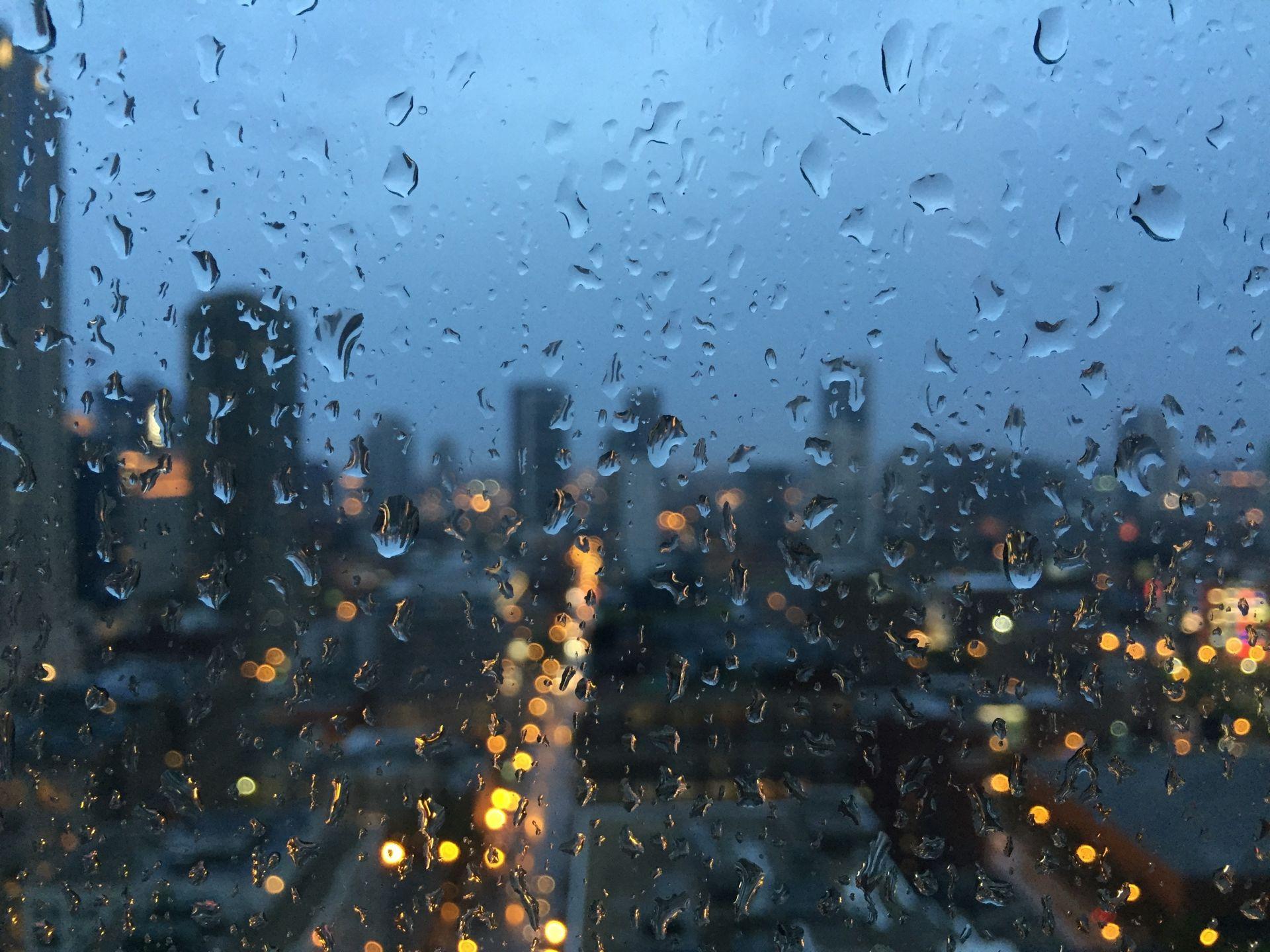 Донские синоптики в предпраздничные дни прогнозируют дожди