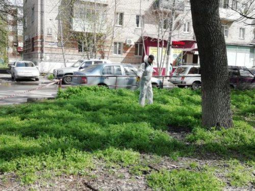 В Новочеркасске начали химобработку территорий против клещей