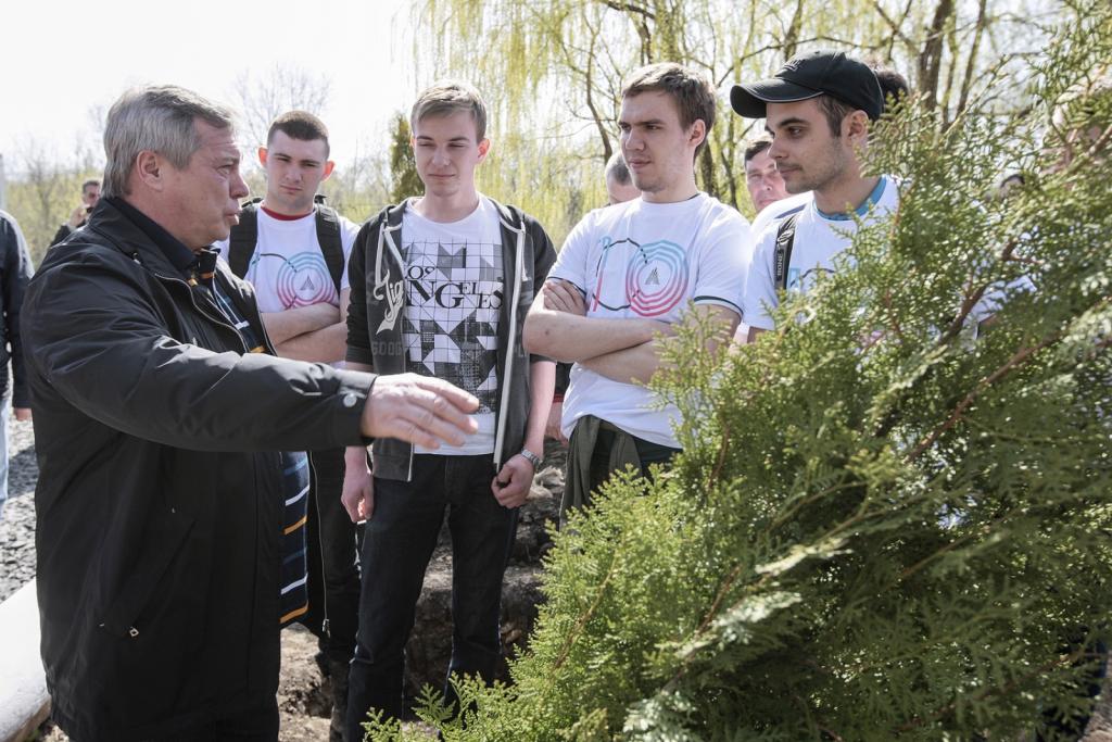 Глава региона призвал жителей Ростовской области участвовать в традиционном Дне древонасаждений