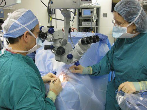 В донском регионе будут проводить операции по пересадке костного мозга