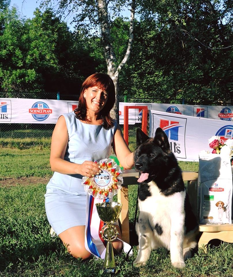 С кубком победителя международной выставки собак американская акита Алекса Голд Блек Меджик вернулась в Новочеркасск