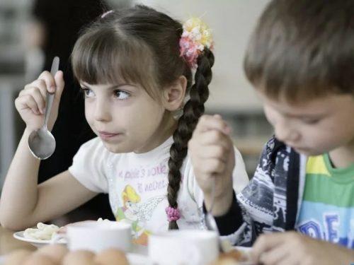 Нормативы бесплатного горячего питания для школьников необходимо увеличить, уверены депутаты Новочеркасска
