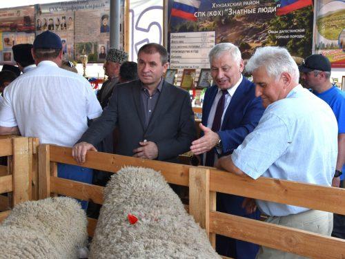 Донские овцеводы завоевали 11 медалей на выставке племенных овец и коз