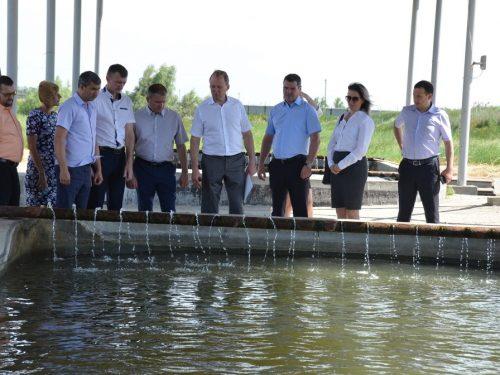 Ростовская область лидер по производству товарной рыбы