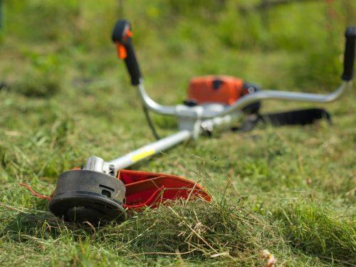 Проведение аукциона на покос травы запланировано на первую половину июля
