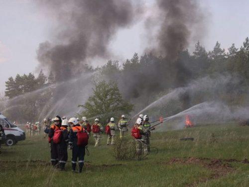 Система «Лесохранитель» позволила выявить и ликвидировать на Дону более 200 пожаров