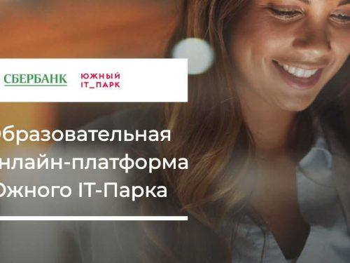 Бесплатный онлайн-курс «Цифровизация бизнеса» запустил Южный IT-парк