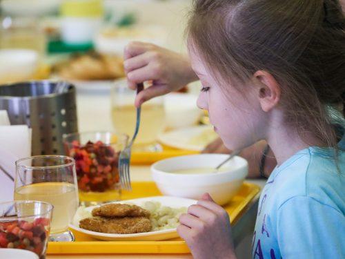 В Новочеркасске продолжается работа над увеличением расходов на организацию бесплатного питания для юных горожан из малоимущих и многодетных семей