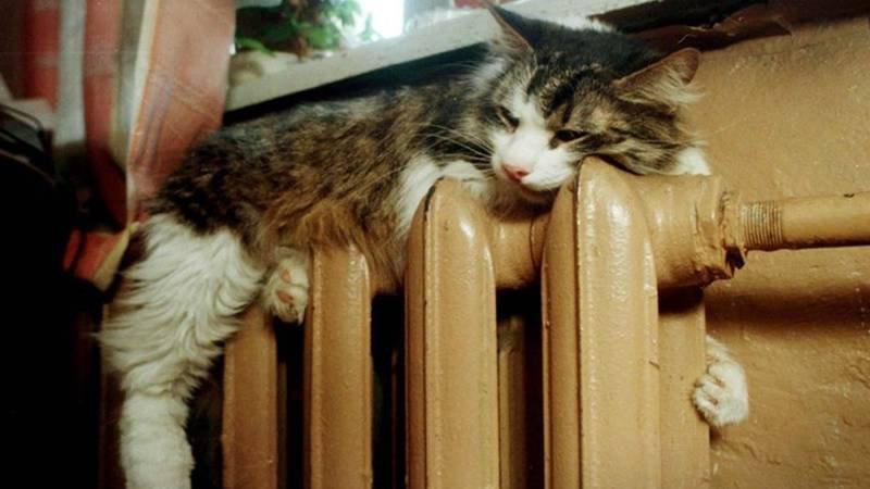 Отопление в домах новочеркасцев дадут в течение ближайшей недели