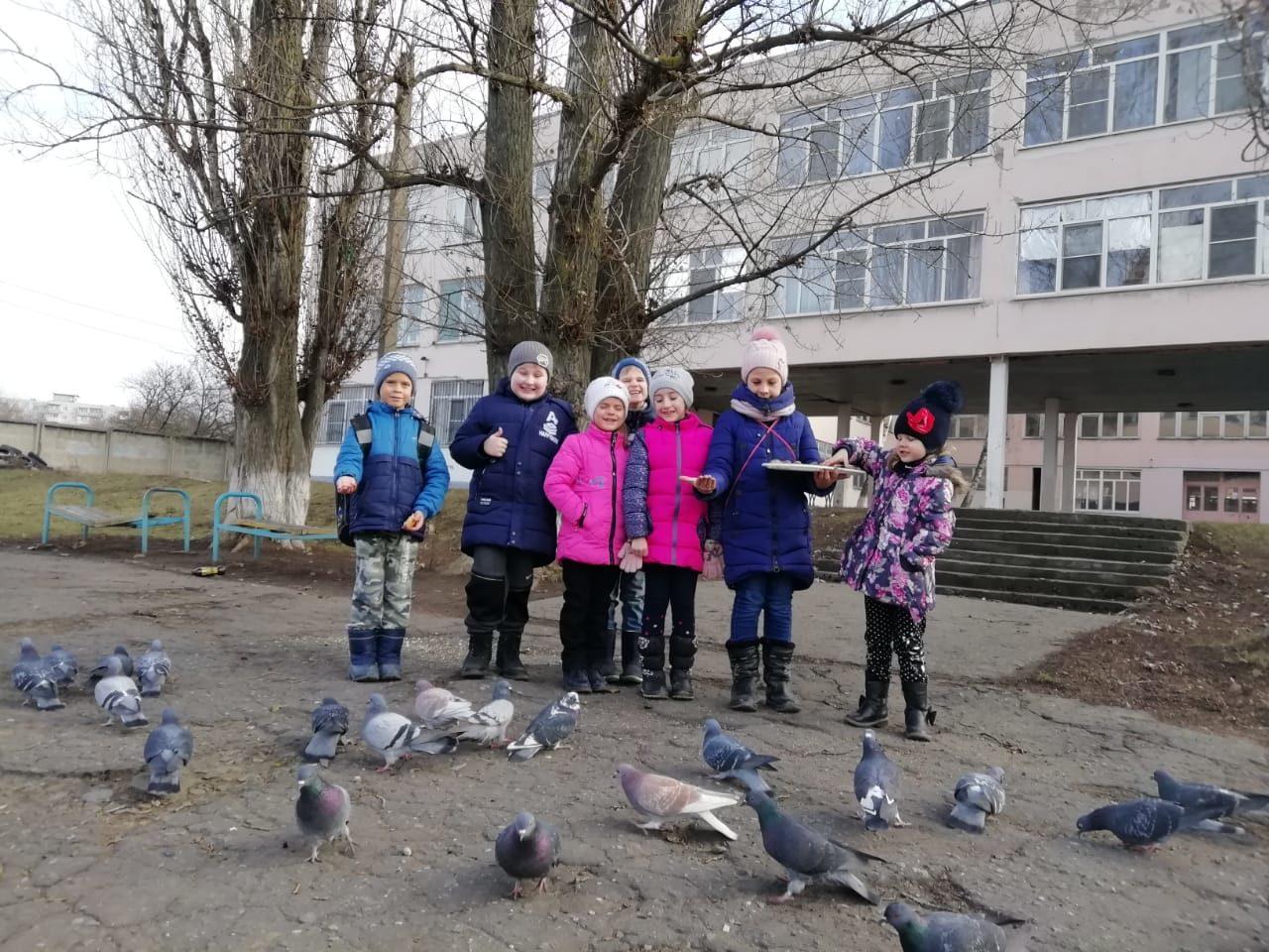 День зимующих птиц