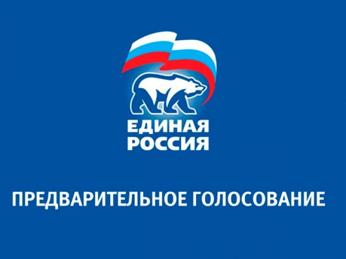 В Новочеркасске определены лидеры предварительного голосования