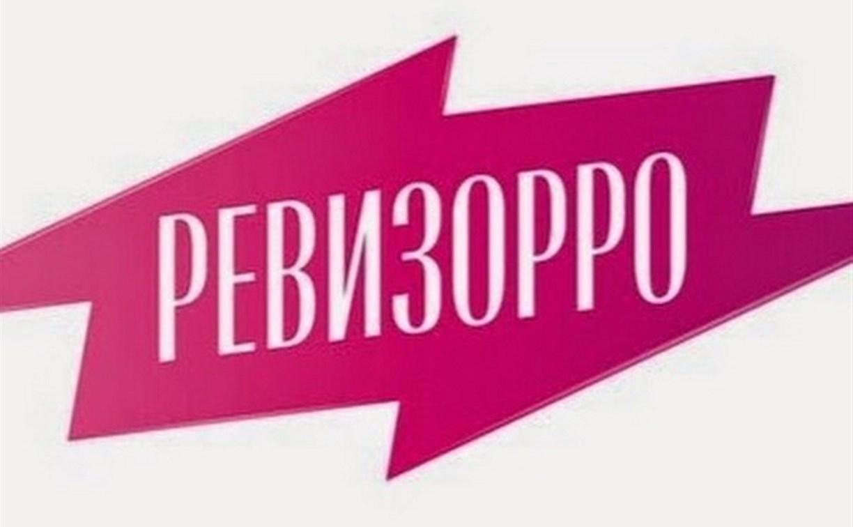 "На Дону ополчились на ""Ревизорро"""