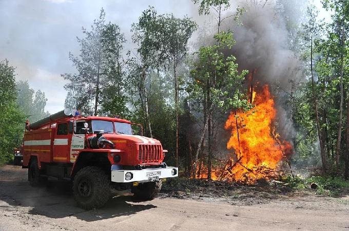 Новочеркасцев просят соблюдать все правила пожарной безопасности