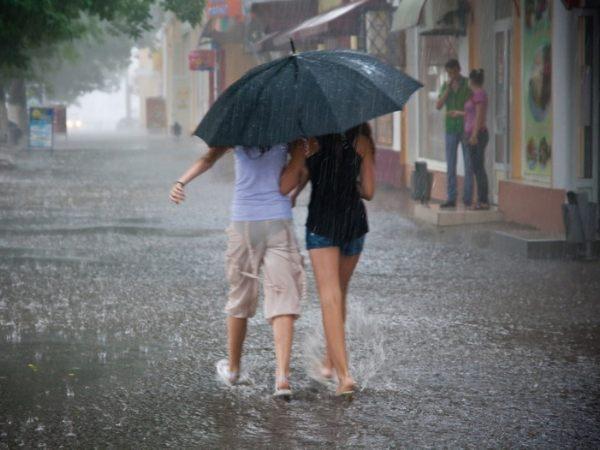 В Ростовскую область пришли дожди