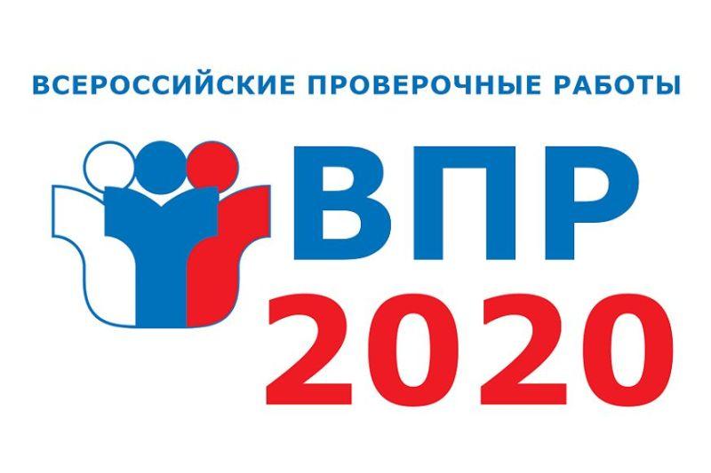 В донских школах стартовали Всероссийские проверочные работы