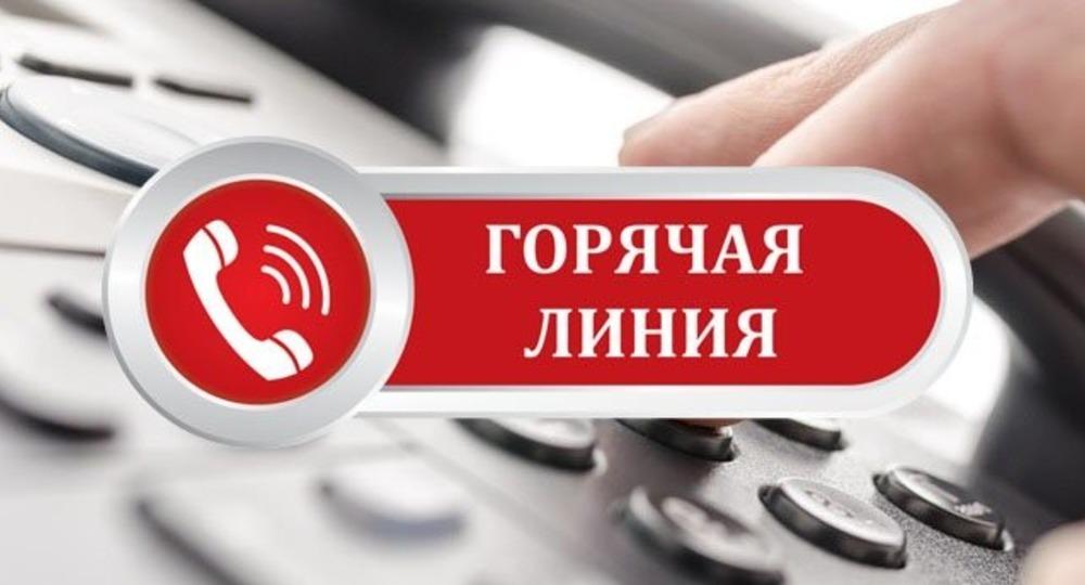 """На Дону начала работу """"горячая линия"""" для родителей школьников"""