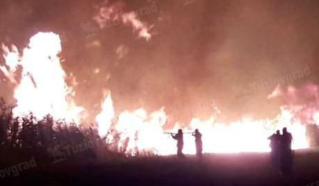 Под Новочеркасском потушили крупный пожар