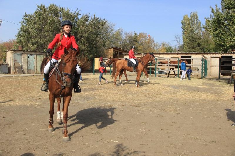 Состязания по конному спорту прошли в Новочеркасске