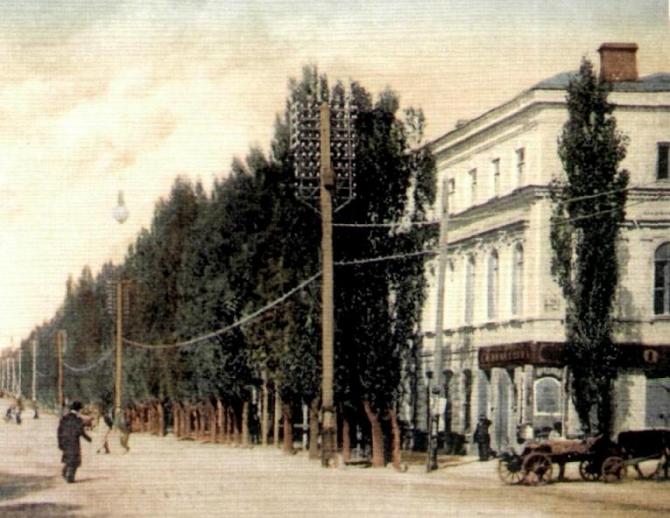 151 год назад в Новочеркасске открыли первую на Дону публичную библиотеку