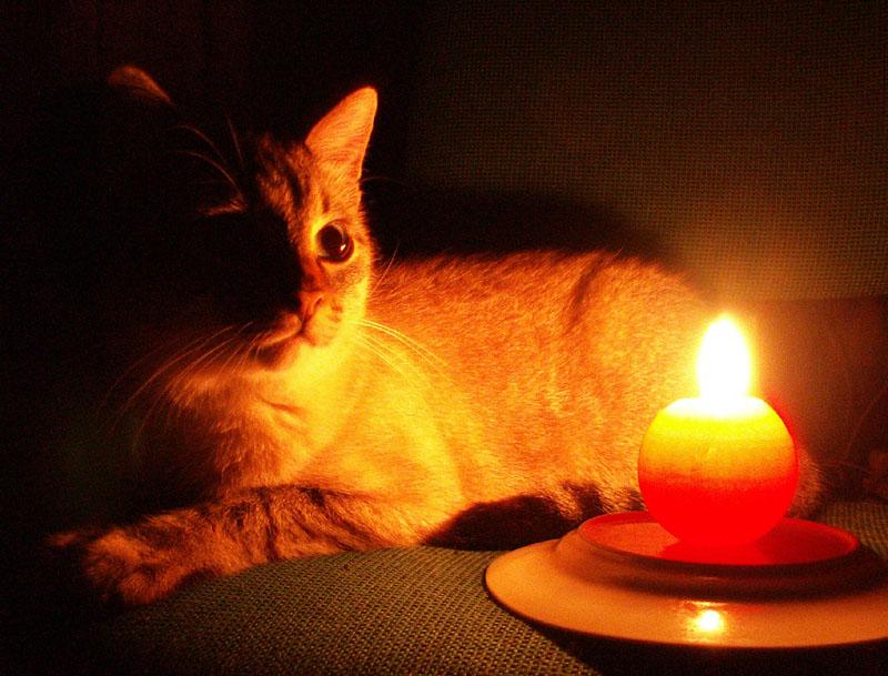 9 марта в Новочеркасске пройдут отключения электричества