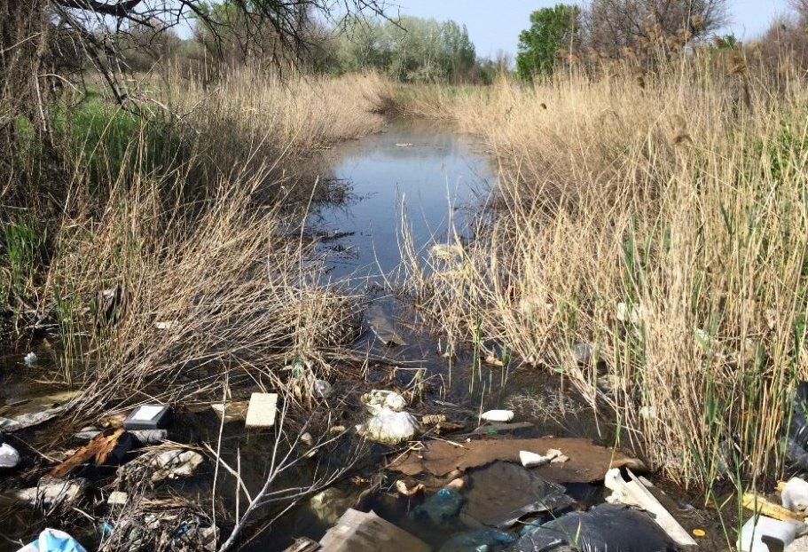 Роспотребнадзор назвал самые грязные водоемы Ростовской области. Новочеркасск вошел в топ