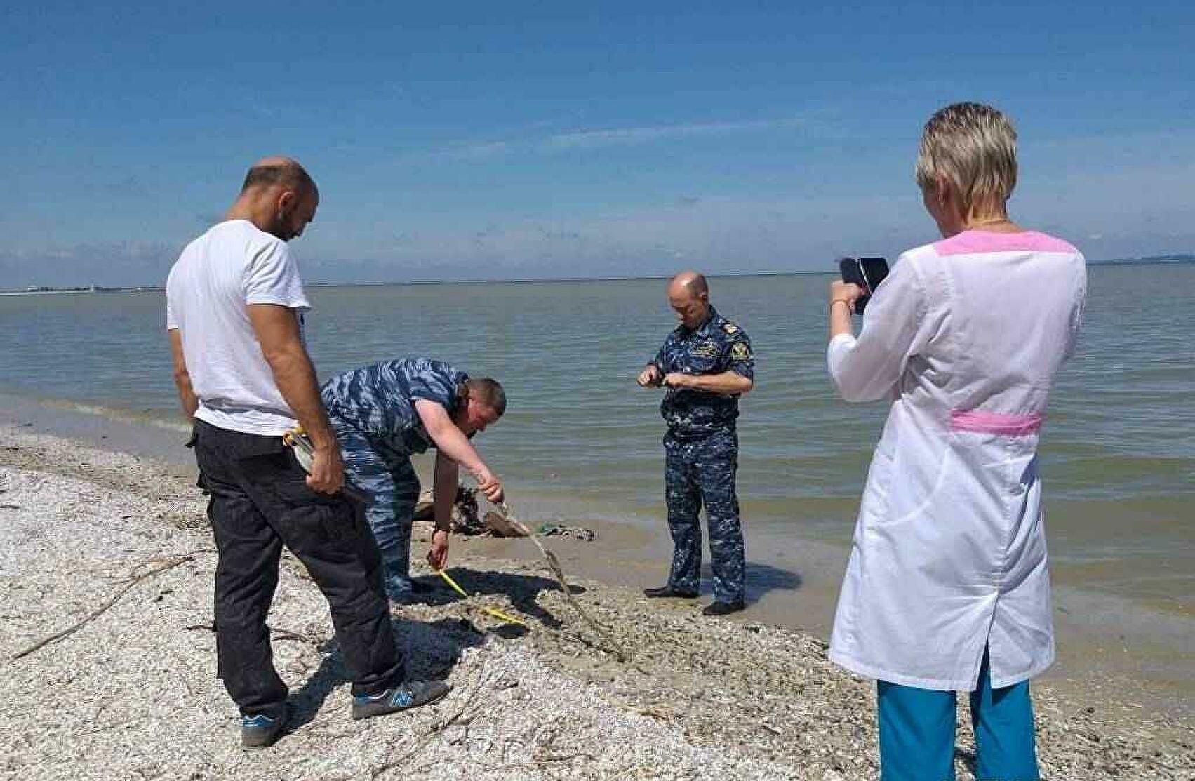 Недостаток кислорода погубил рыбу в Цимлянском водохранилище