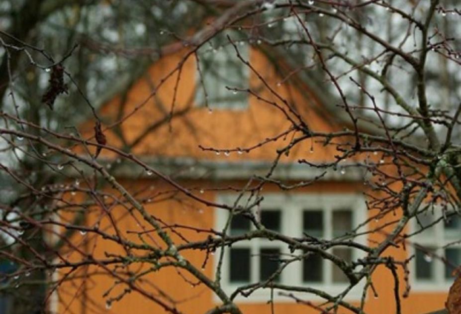 Новочеркасская полиция раскрыла кражу с дачного участка